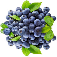 颗粒黝黑、肉质饱满、酸甜可口的云南黑莓(黑草莓)水果尝鲜