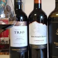 """抖鱼干超好看 篇四:""""绝对性价比""""-智利葡萄酒的最强选购指南(附价格参照表)"""