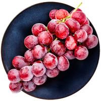 云南红提葡萄/提子1.5kg装新鲜水果