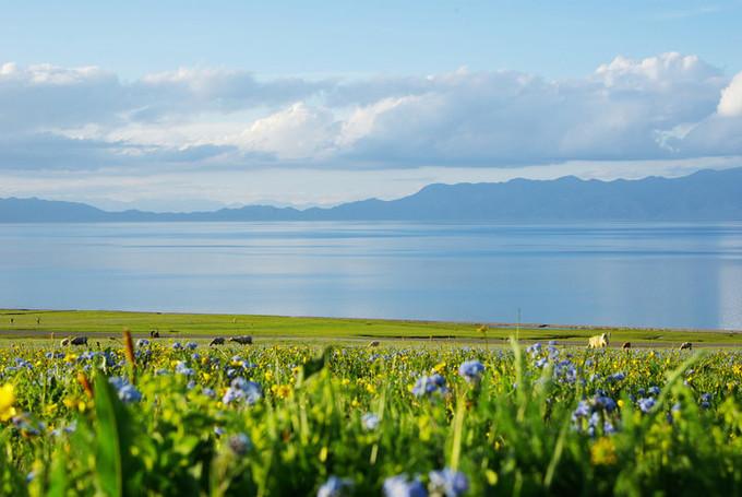 大西洋最后一滴眼泪,面积是西湖的70倍,水质清澈却没有鱼……