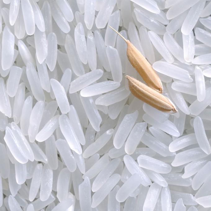 粳米、籼米哪种更适合炒饭?18种不同炒饭教学集锦,让你的食谱里不仅只有蛋炒饭!