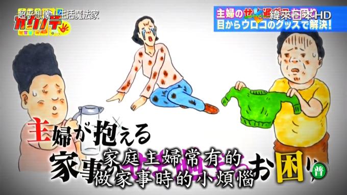 """日本综艺教你解决""""生活小烦恼"""":如何轻松赶走苍蝇?吸盘怎么能不掉下来?"""