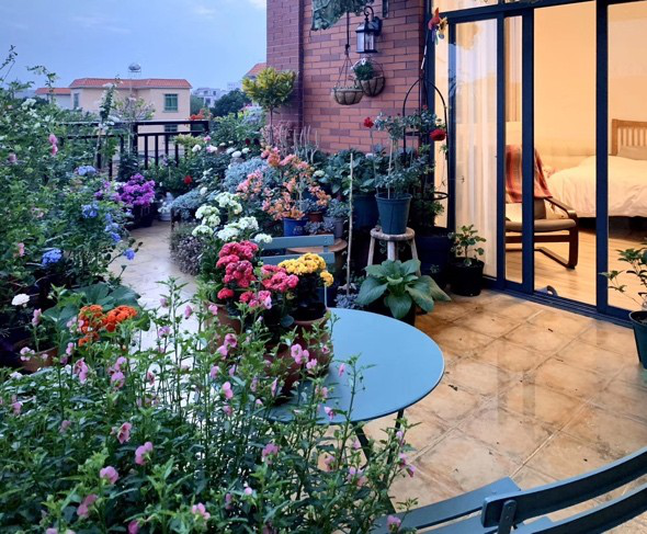 熬夜也要造花园,新手宝妈养娃园艺两不误,2年半打造40㎡空中花园,为了花园放弃换房