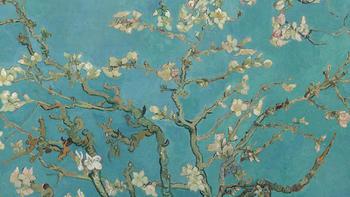也许你对梵高有些误会—解读后印象派大师文森特·梵高(Vincent van Gogh)