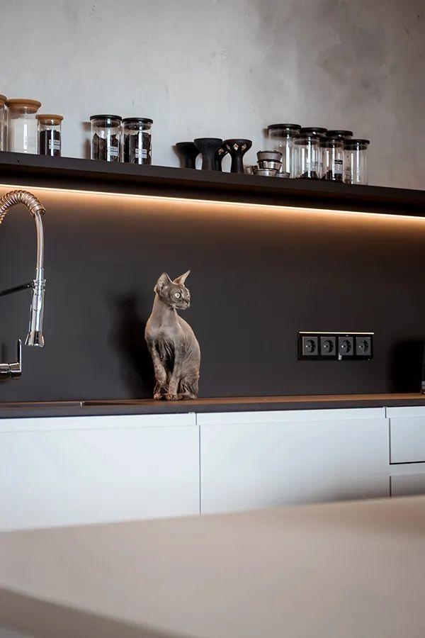 三间小公寓拼成136平大宅,时髦得不像话,人和猫都安逸!