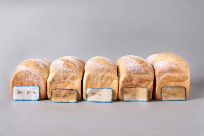 超级测评   什么样的水最适合做面包!