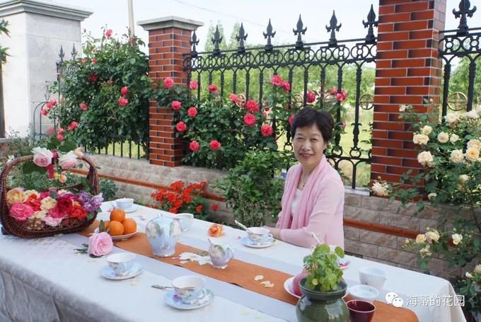 上海 60后姐姐退休后坚持追梦,用5年打造开满玫瑰的大花园