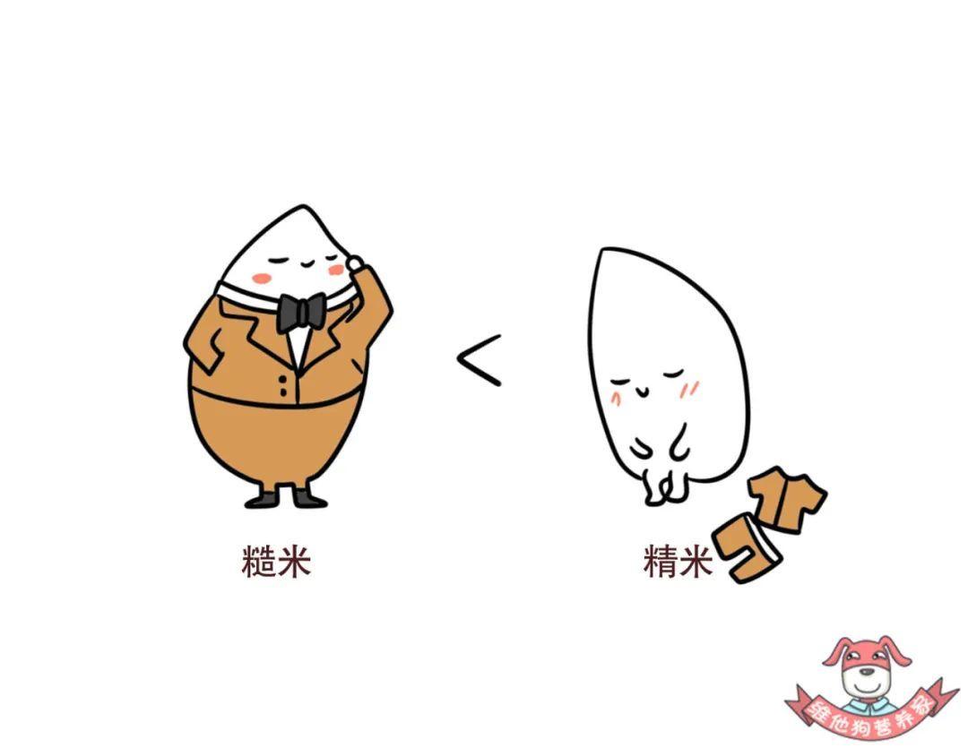米饭营养升级的几种办法,让它既好吃又健康!